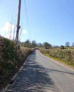 harptree hill