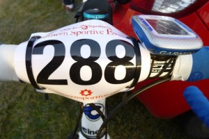 rider number