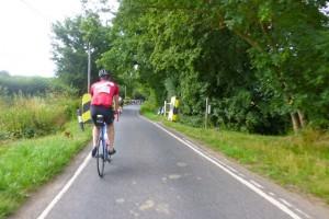 Surrey lanes