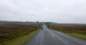 more wet moors