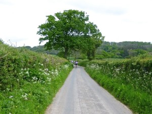 approaching the BIG hill