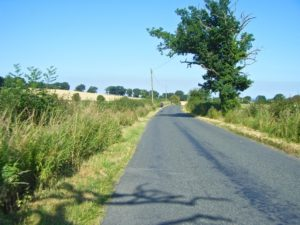 sunny country lanes