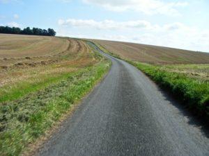 rolling-golden-hills