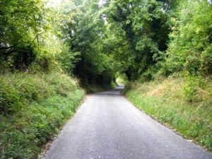 up-a-green-tunnel-hill